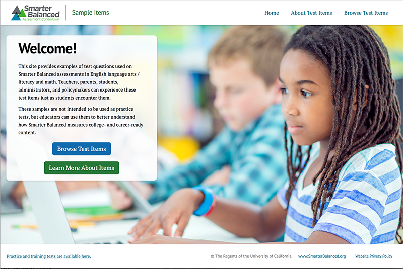 Screenshot of Sample Items Website home page.